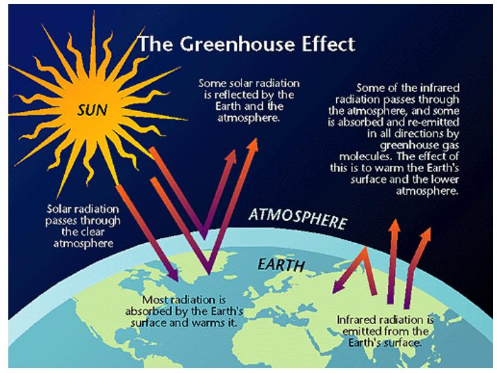 5 paragraph essay on global warming and the greenhouse effect The topic of this essay is global warming or the greenhouse effect  in this essay i will explain what global warming is, what causes it, how it is affecting us, and how we can stop it the greenhouse effect is a common term for the effect that certain changes in the lower atmosphere have on temperatures.